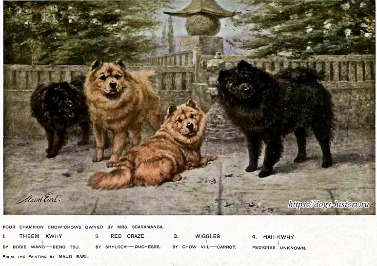 https://dogs-history.ru/wp-content/uploads/2017/08/13-2.png